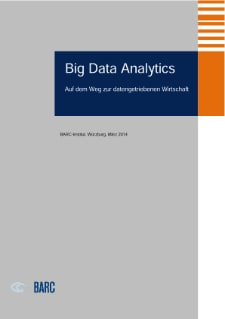 Big Data Analytics, DACH Region - White Paper