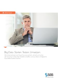 Big Data, Cloud Services, digitale Transformation - White Paper