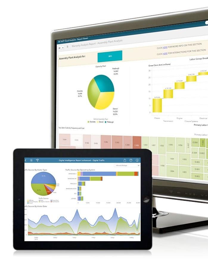SAS Visual Analytics-Screenshot