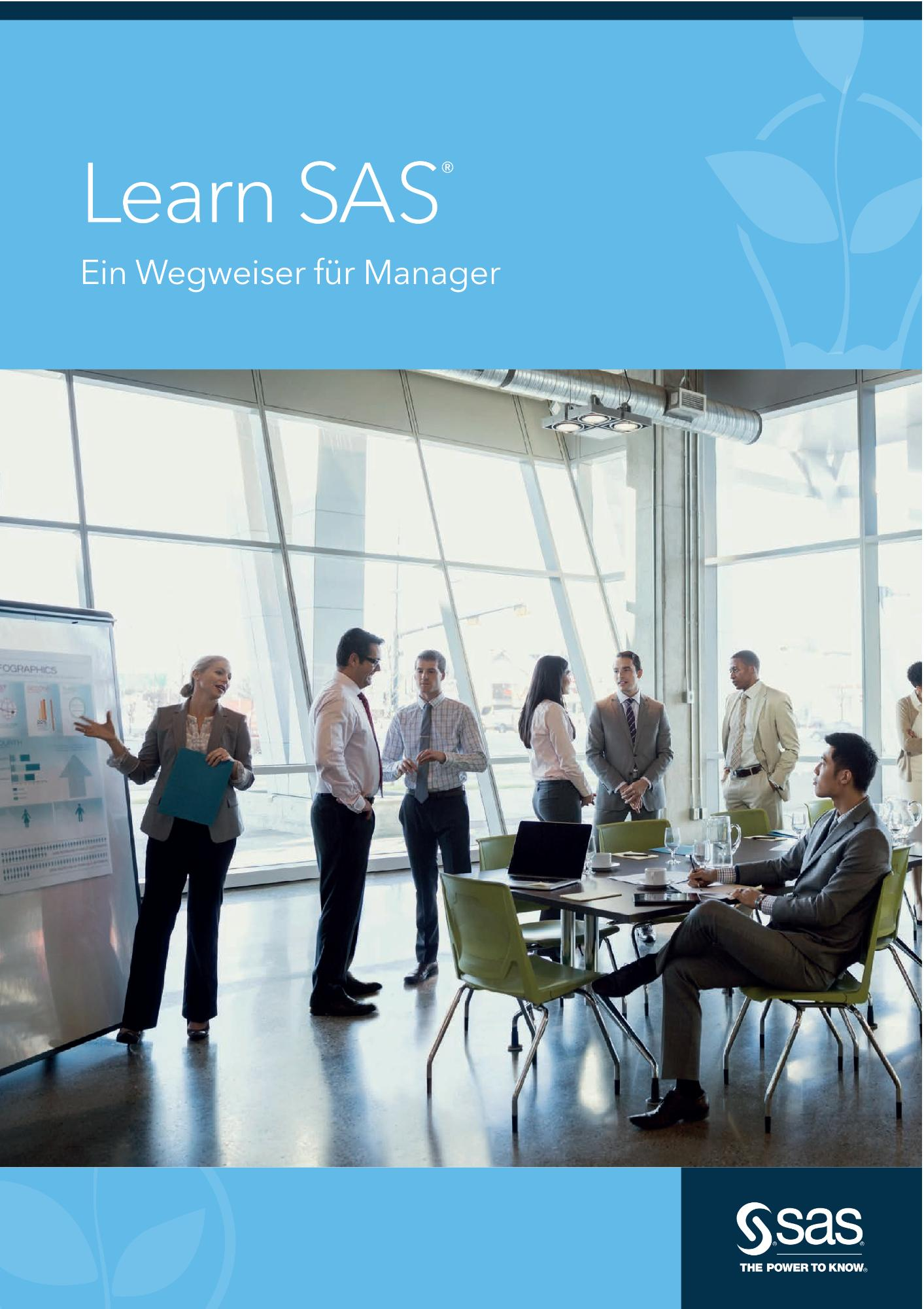 Learn SAS - Ein Wegweiser für Manager