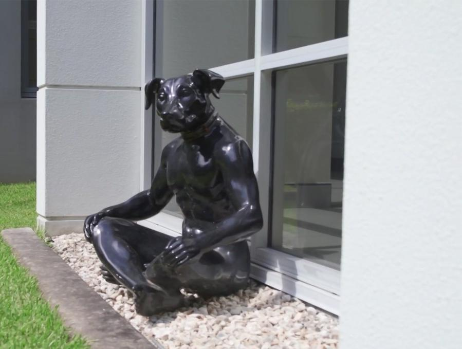 Black Dog Institute Statue