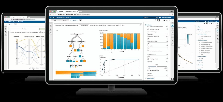 SAS® Visual Statistics cluster on desktop monitors