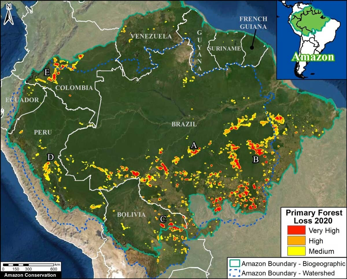amazon rainforest loss map