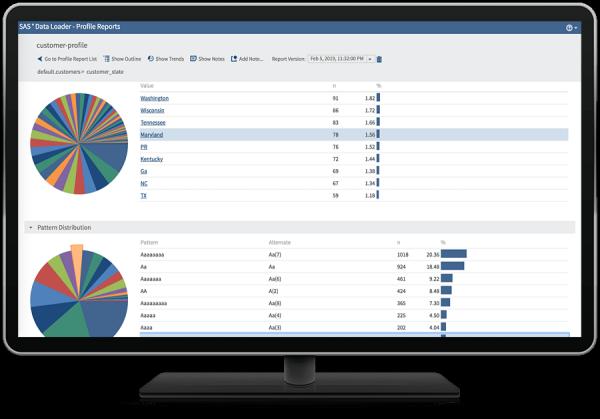 SAS® Data Loader for Hadoop - customer profile