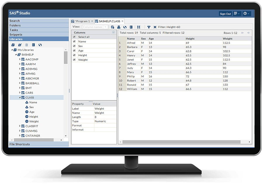 Education Analytical Suite showing SAS Studio libraries on desktop monitor