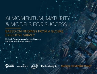 AI Momentum, Maturity and Models for Success