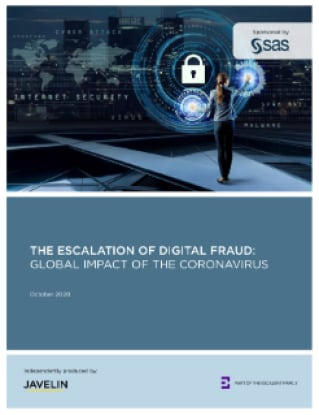 The Escalation of Digital Fraud