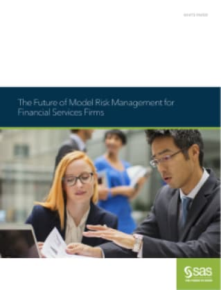 The Future of Model Risk Management for Financial Services Firms