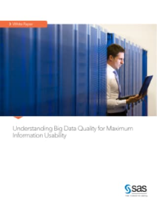 Understanding Big Data Quality for Maximum Information Usability
