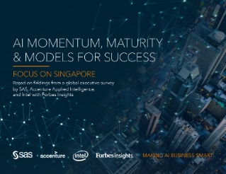 AI Momentum, Maturity & Models for Success: Focus on Singapore