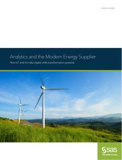 Analytics and the Modern Energy Supplier