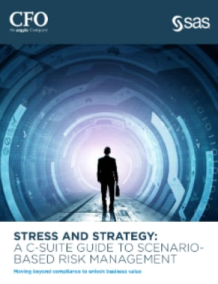 Stress and Strategy: A C-Suite Guide to Scenario-Based Risk Management