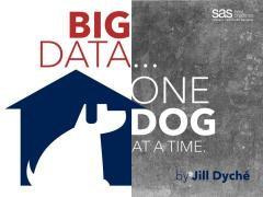 Big Data, One Dog at a Time