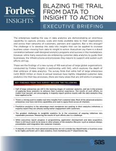 Blazing the Trail from Data to Insight to Action