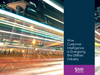 How Customer Intelligence Is Energizing the Utilities Industry