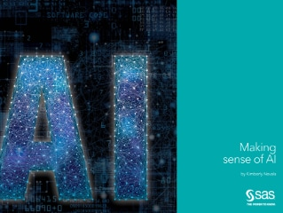 Making Sense of AI