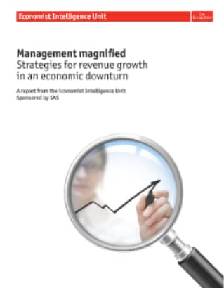 Management Magnified: Strategies for revenue growth in an economic downturn