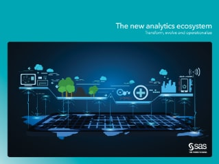 The new analytics ecosystem