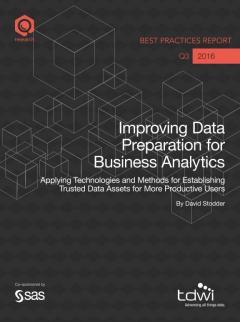 Improving Data Preparation for Business Analytics