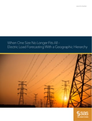 When One Size No Longer Fits All - Electric Load Forecasting with a Geographic Hierarchy