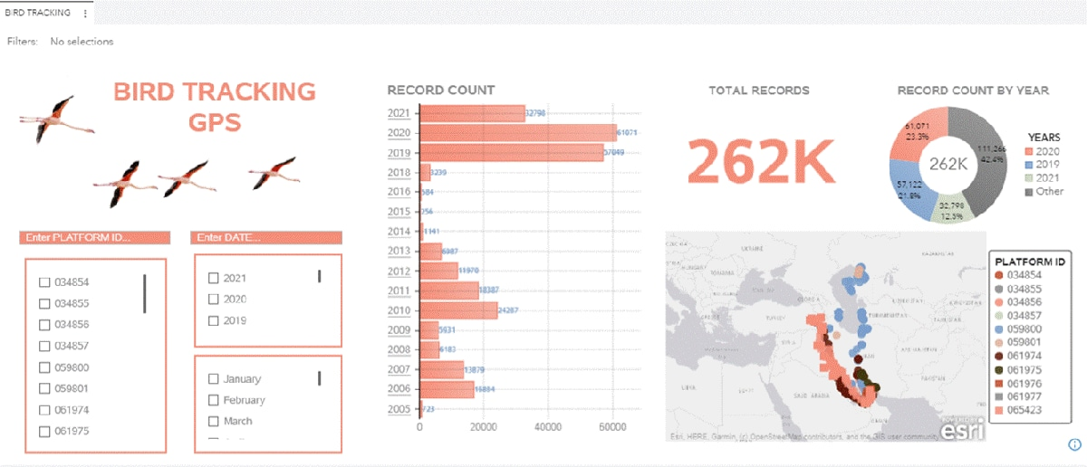 SAS Visual Analytics Bird Tracking