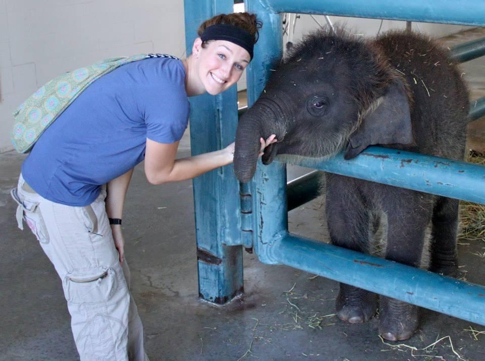 SAS employee Sarah Harden holding baby elephant trunk