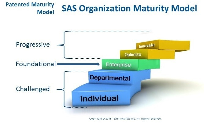 sas-organization-maturity-model