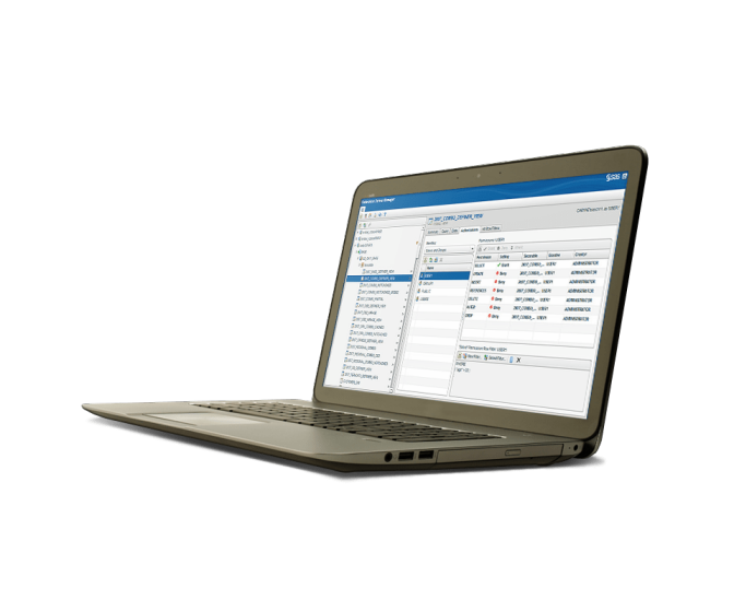 SAS Federation Server shown on laptop