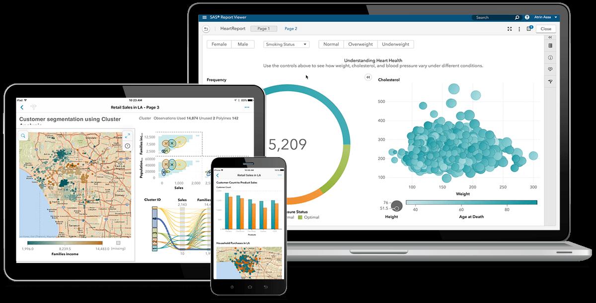 SAS® Visual Analytics on various devices
