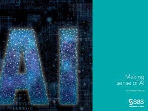Making Sense of AI