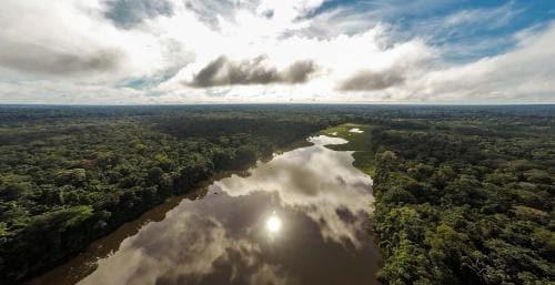 Aerial view of the Tambopata river in Peru