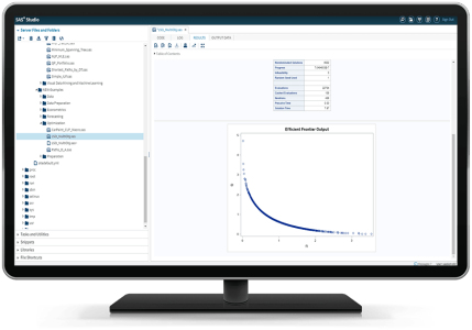 SAS Optimization shown on desktop monitor