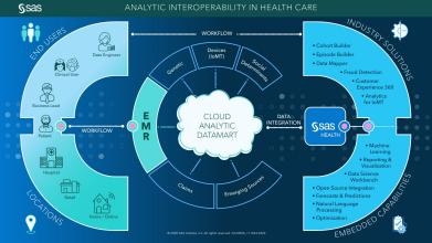 Analytic Interoperability In Health Care