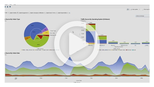 Visual Analytics Reporting Demo