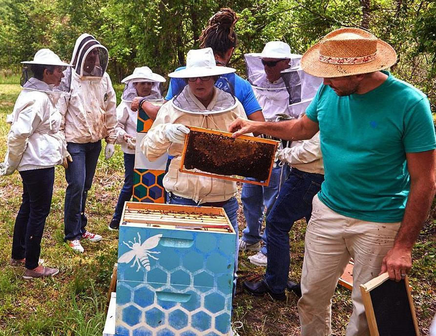 SAS beekeepers giving tour