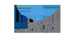 IDC FIIA 2021 Logo
