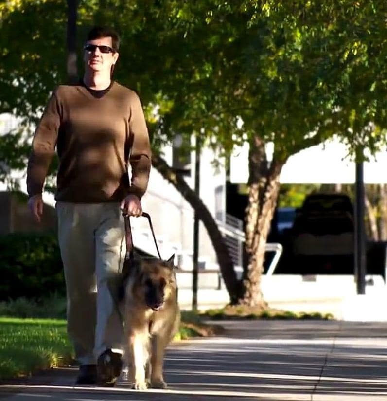 SAS employees walking on SAS campus with seeing-eye dog