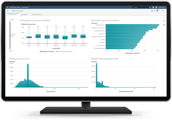SAS Econometrics output viewed in SAS Visual Analytics on desktop monitor