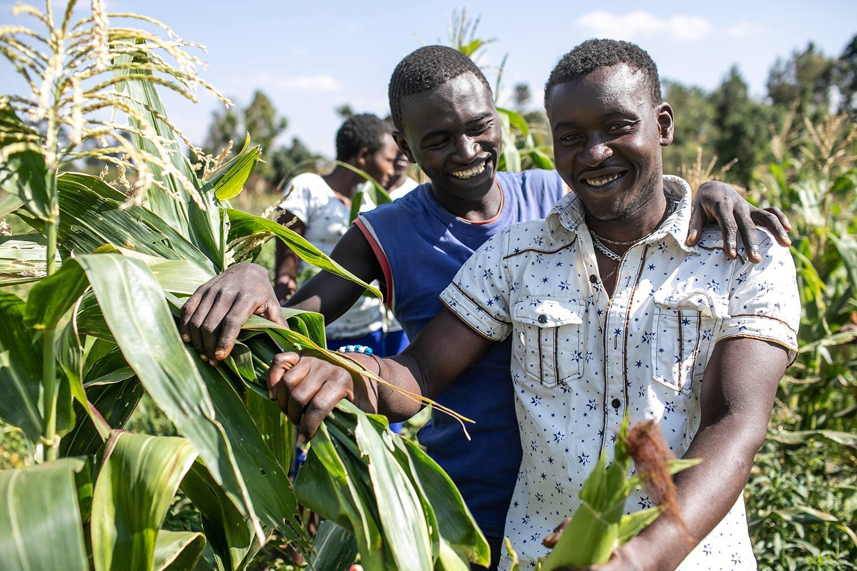 Men Farming in Kenya