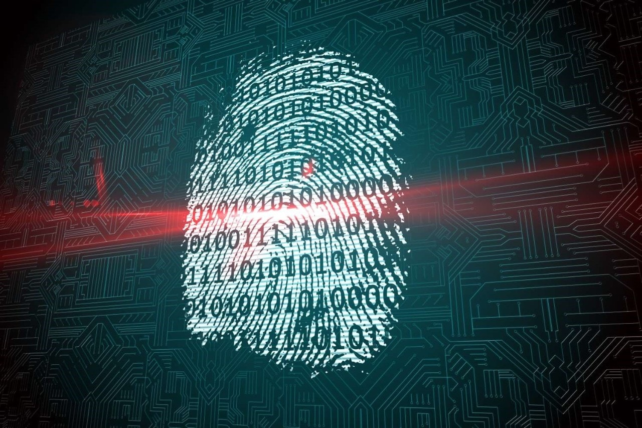 government fraud technology