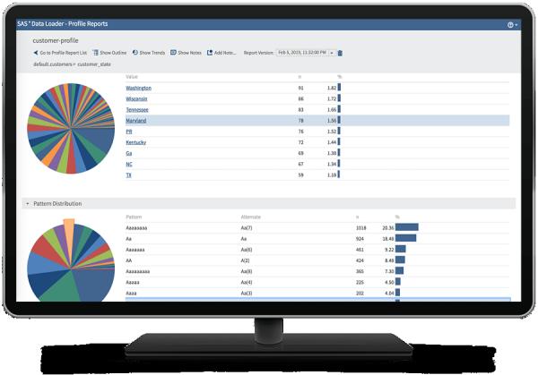 SAS Data Loader for Hadoop showing profile report on desktop monitor