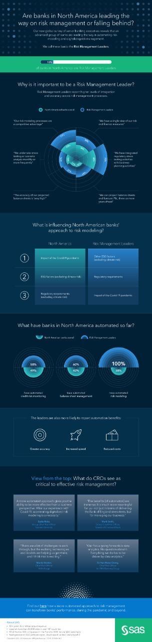 Risk survey infographic