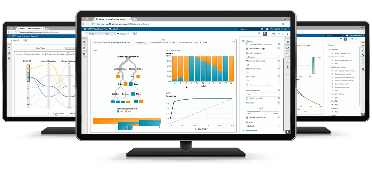 SAS® Visual Statistics cluster on desktop monitors