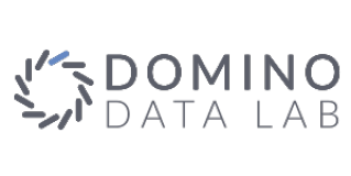 Domino Data Lab
