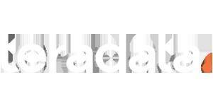 Teradata logo reverse