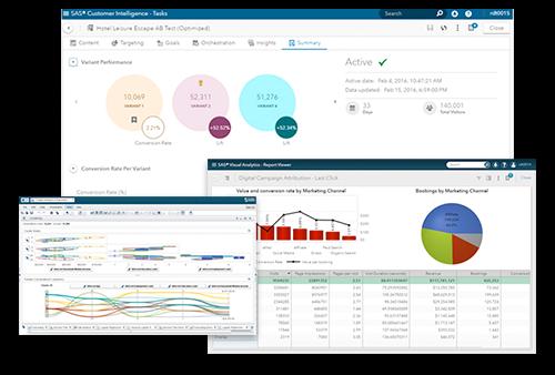 Customer Intelligence 360 Screen Collage