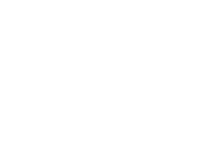 Cheetah population infographic