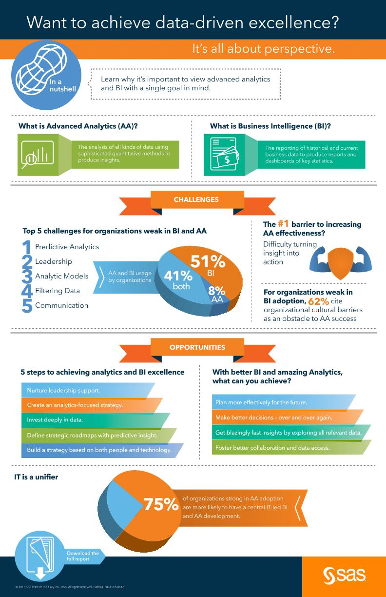BI2017-infographic, Want to achieve data-driven excellence? It's all about perspective.