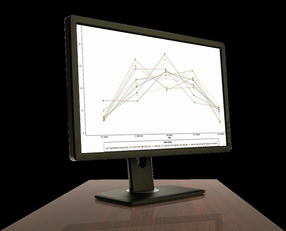 SAS Size Optimization Shown on Desktop Monitor