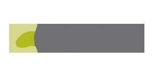 Decisyon logo